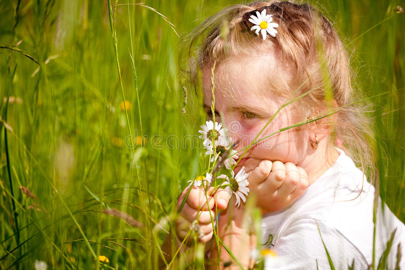 Girl and daisy royalty free stock photography