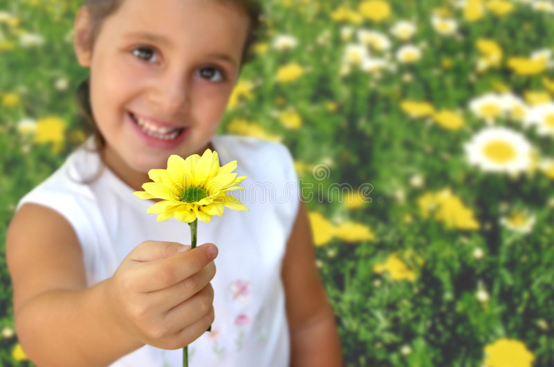 Girl with daisy. Little girl offering an yellow daisy (focus is on the yellow daisy, shallow DOF