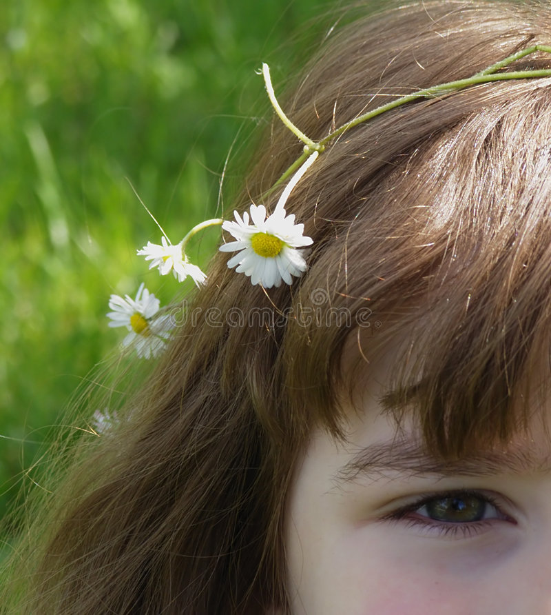 Download Girl with daisy flowers stock photo. Image of chammomille - 5362096
