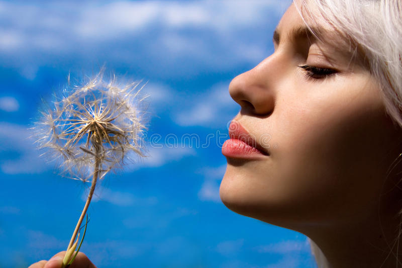 The girl with a dandelion stock images