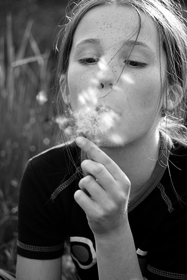 Download Girl with dandelion stock photo. Image of nice, wish - 21995752