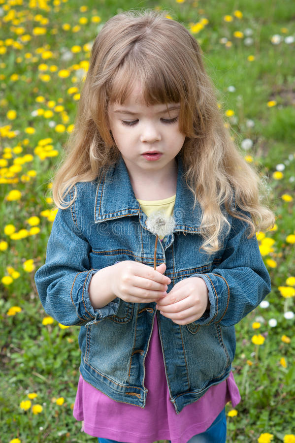 Download Girl with dandelion stock image. Image of carefree, outside - 24610613