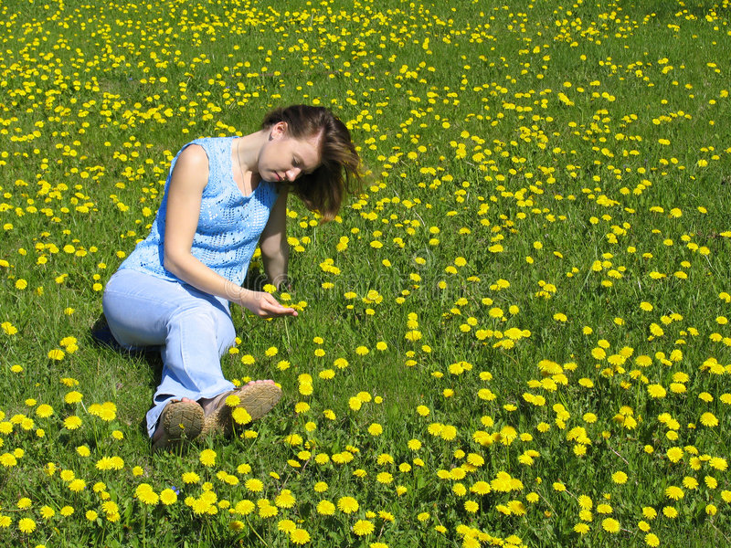 Girl on dandelion lawn stock image