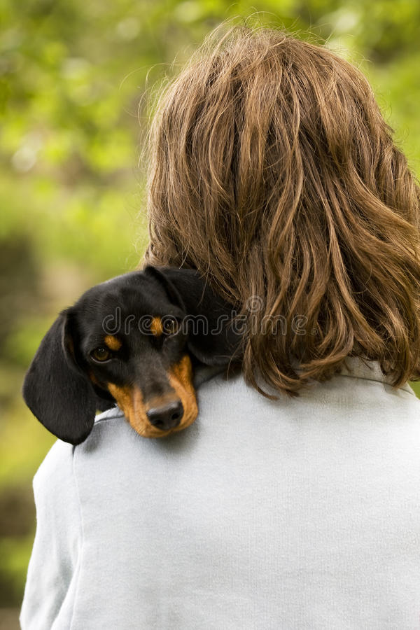 Girl with Dog. Girl in the grass with pet dog royalty free stock photography