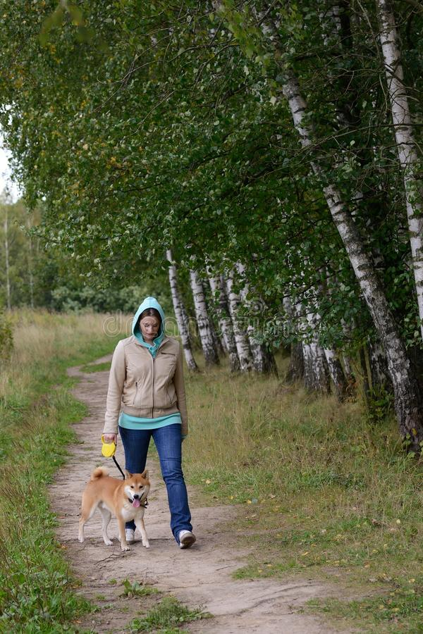 Download Girl with dog stock image. Image of hunting, collar, autumn - 26552047