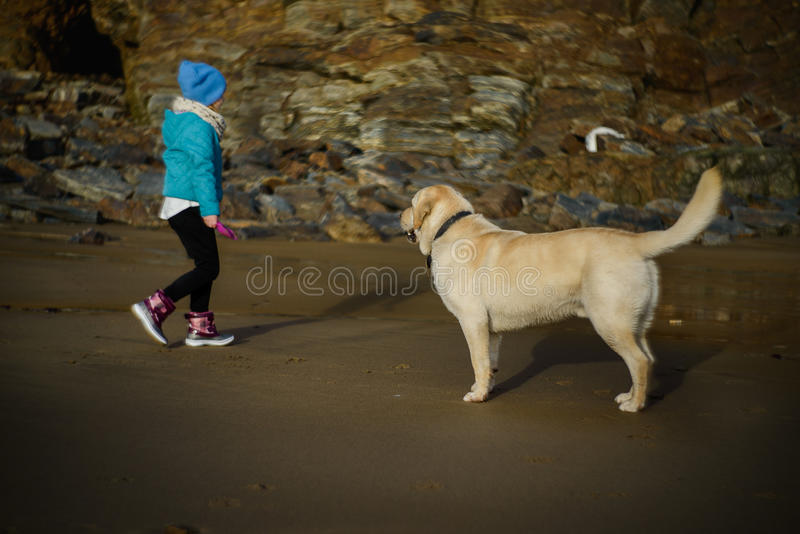 Girl and a Dog at the Beach. A young girl and a golden labrador at the beach on a cold winter's day royalty free stock photos
