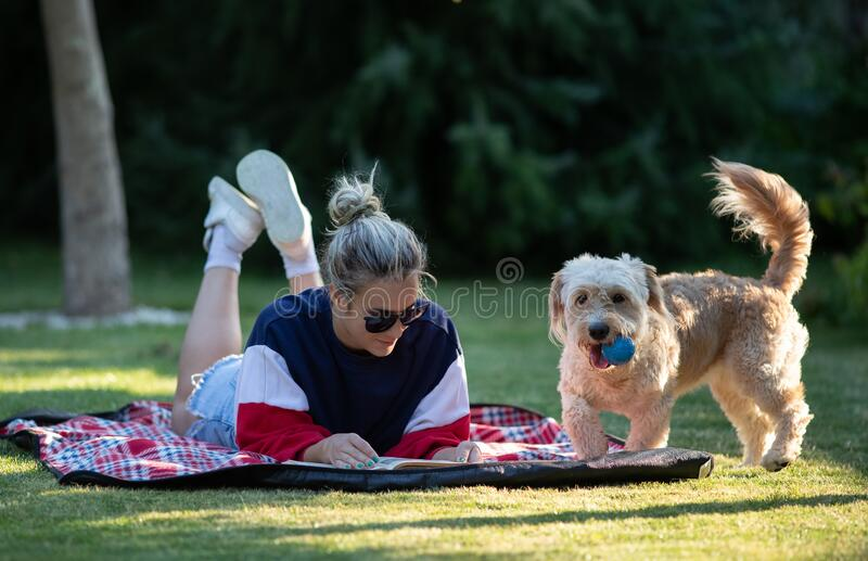 Girl with dog enjoying in park royalty free stock photos