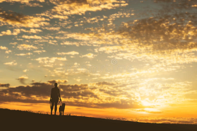 Girl with a dog at sunset. stock photos