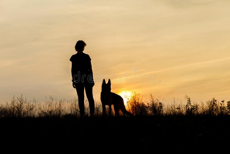 Girl and dog at sunset . stock photos