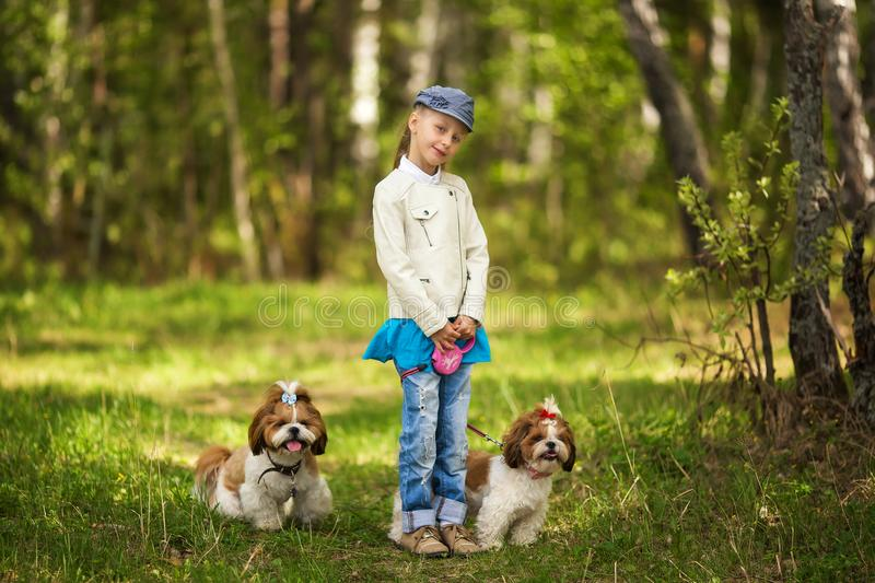 Girl and dogs as friends happy together in summer in the nature royalty free stock photo