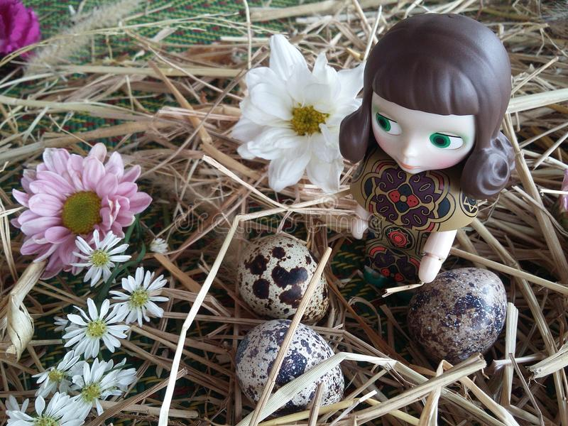 Girl doll with Quail eggs and chrysanthemums. Bird's nest Design and decorate on thatch background texture stock photos
