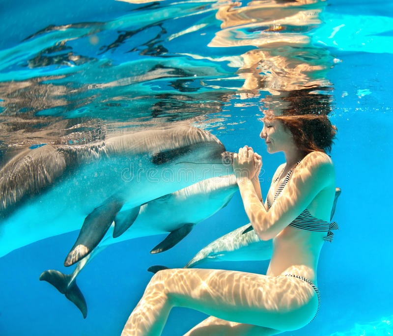 Girl and dolphin. Girl under the water touches the dolphin stock image