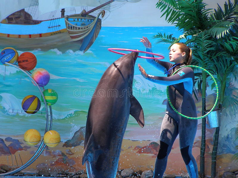 Girl and dolphin royalty free illustration