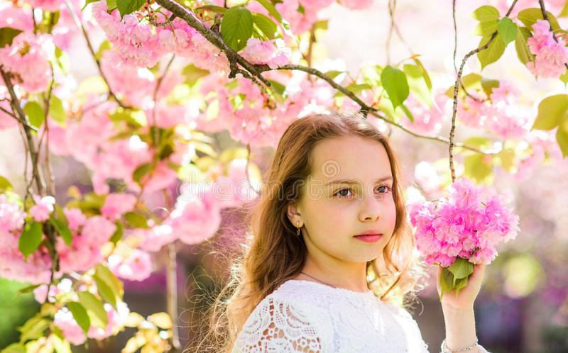 Girl on dreamy face standing under sakura branches with flowers, defocused. Tenderness concept. Girl with long hair. Outdoor, cherry blossom on background. Cute stock images