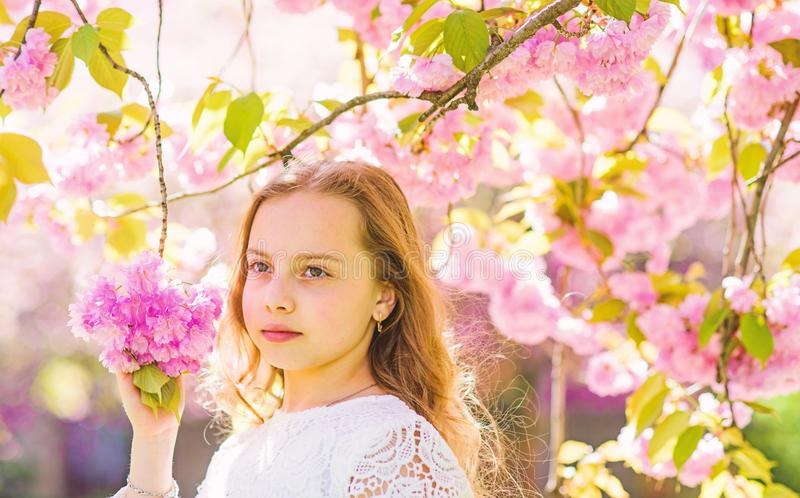 Girl on dreamy face standing under sakura branches with flowers, defocused. Tenderness concept. Girl with long hair. Outdoor, cherry blossom on background. Cute stock photo