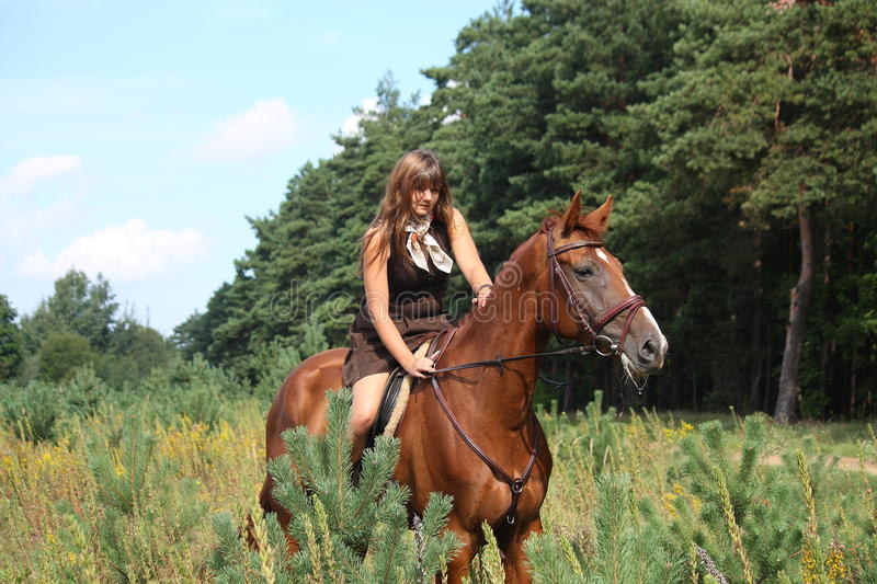 Girl in dress and brown horse portrait in forest royalty free stock photos
