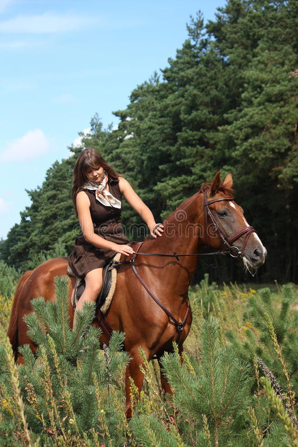 Girl in dress and brown horse portrait in forest royalty free stock images