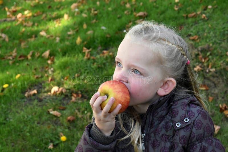 Girl eating apple. Beautiful little caucasian girl eating an apple stock image