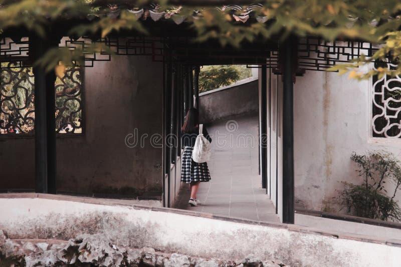 Girl&en x27; s-baksida arkivbild