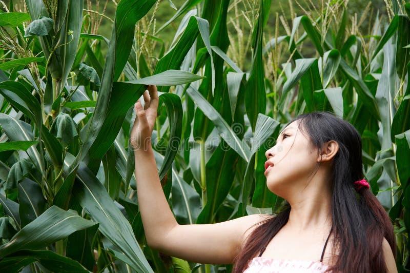 Girl enjoy nature royalty free stock images