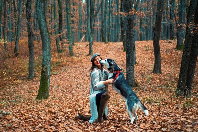 Girl enjoy walk with husky dog. Siberian husky favorite pet. Animal husbandry. Girl pretty stylish woman walking with. Husky dog autumn forest stock photography