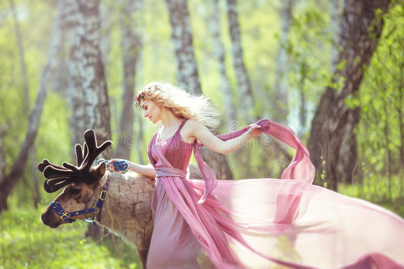 Girl in fairy dress with a flowing train of dress walking with a reindeer stock photography