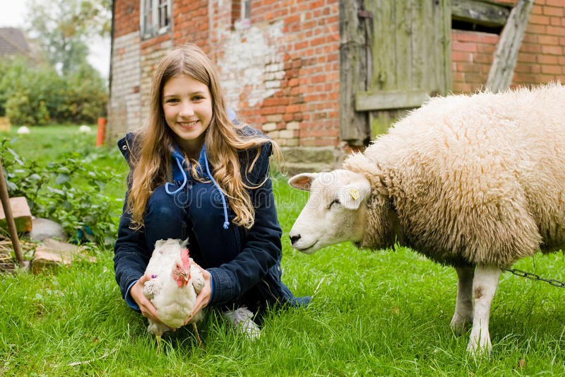 Download Girl on the farm stock image. Image of sheep, chicken - 45794347