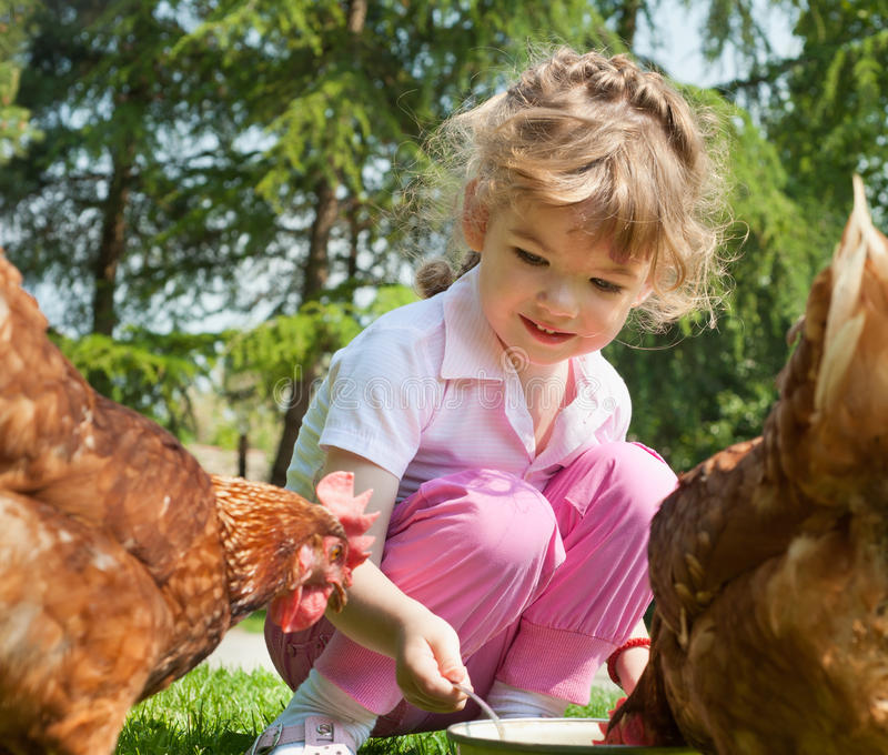 Download Girl feeding chickens stock image. Image of farm, horizontal - 19657881