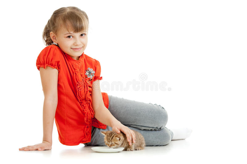 Girl feeding homeless alley cat. In studio royalty free stock images
