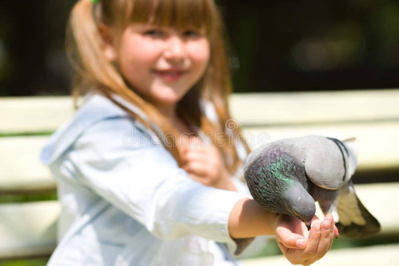 Download Girl Feeding Pigeon stock image. Image of eating, feather - 14435359