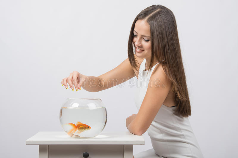 The girl feeds a goldfish in an aquarium. A young girl sits next to a round aquarium in which swimming goldfish royalty free stock image