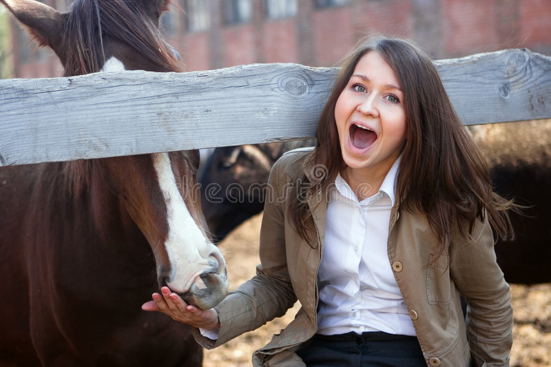 Girl feeds a horse stock images