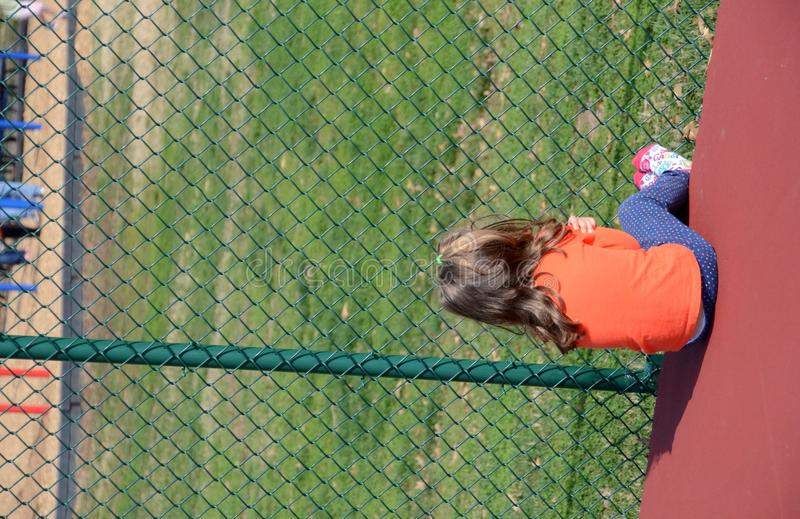Download Girl and fence stock photo. Image of fence, gaze, girl - 24376016