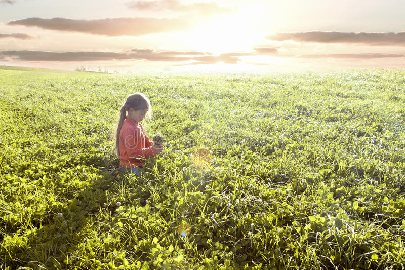 Download Girl in field stock photo. Image of green, years, tranquil - 16902942