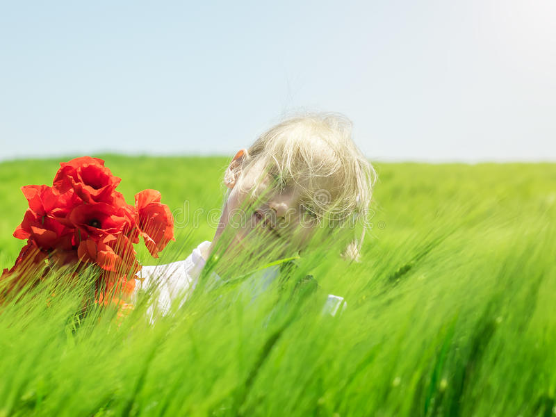 Girl in a field of green rye in the wind. royalty free stock photography