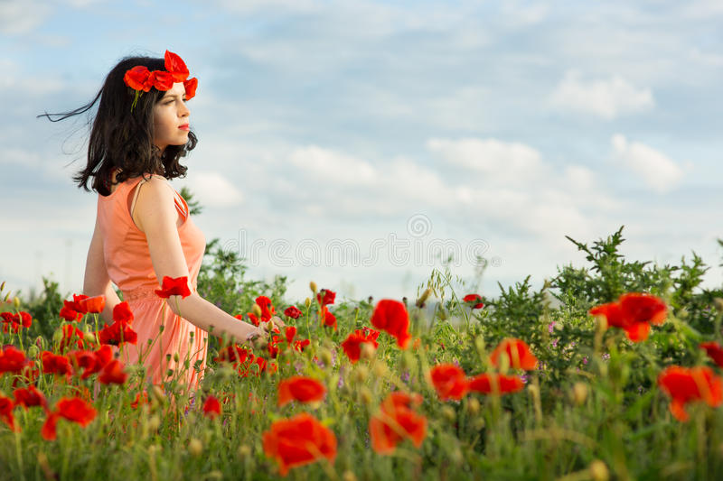 Girl in a field of poppies. Girl walks in a field of poppies royalty free stock image