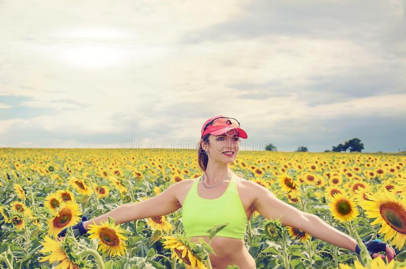 Girl on the field with a sunflower royalty free stock image