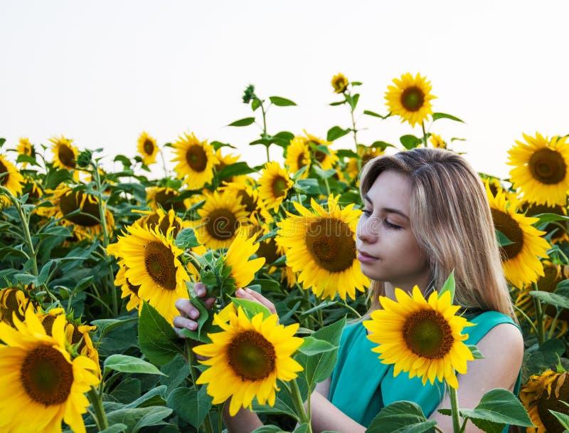 Girl on the field of sunflowers. Beautiful girl on the field of sunflowers royalty free stock image