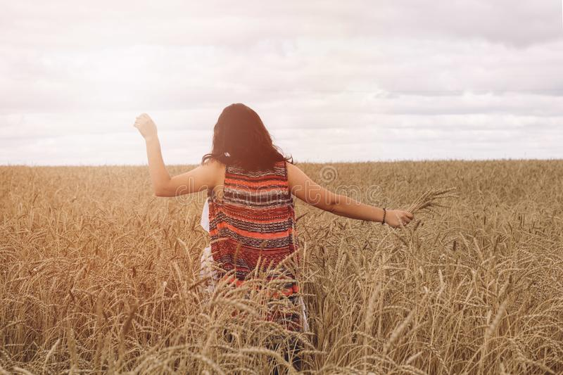Girl in a field. A young girl in a field of wheat. warm solar toning royalty free stock photos