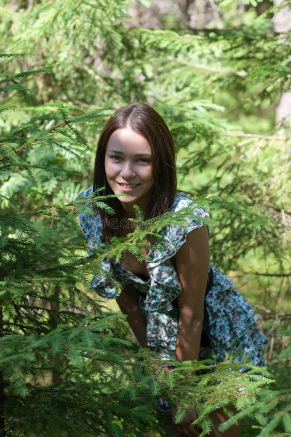 Download Girl in fir-tree wood stock photo. Image of beautiful - 20396414