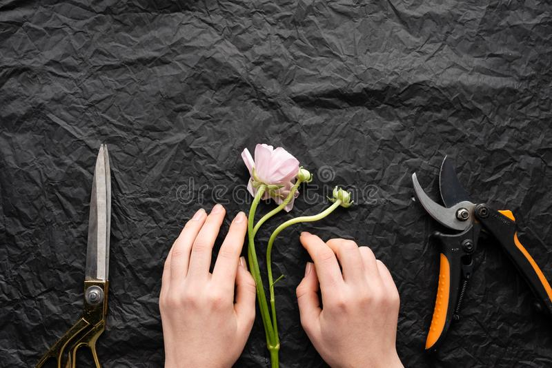 Girl florist lays out a flower tulip. Scissors and a knife royalty free stock photo