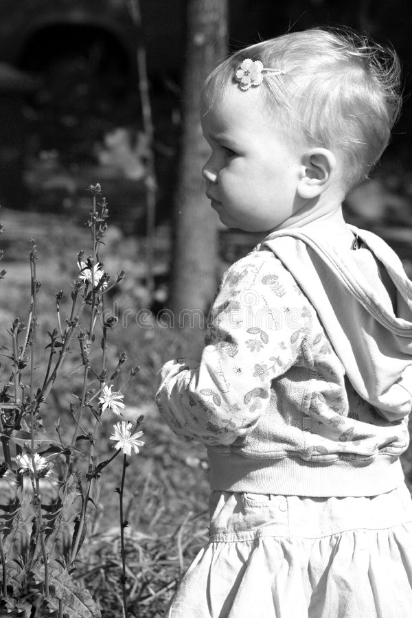 Girl and the flowers stock photos