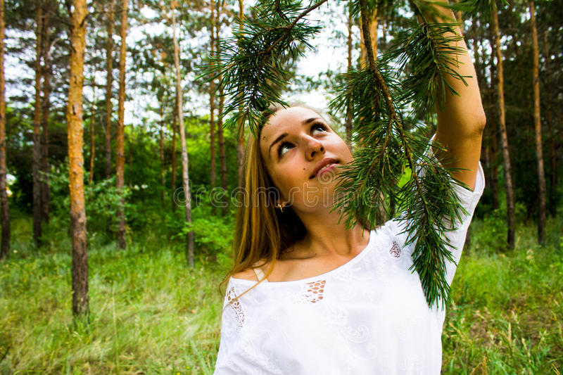 Girl in the forest stock photos