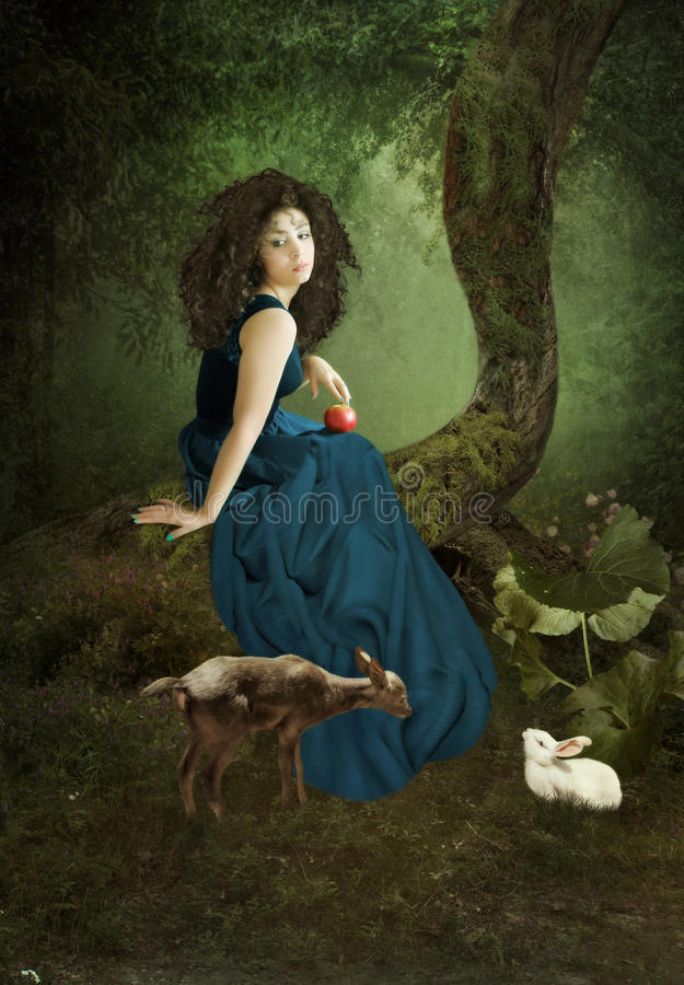 The girl in a forest stock photography
