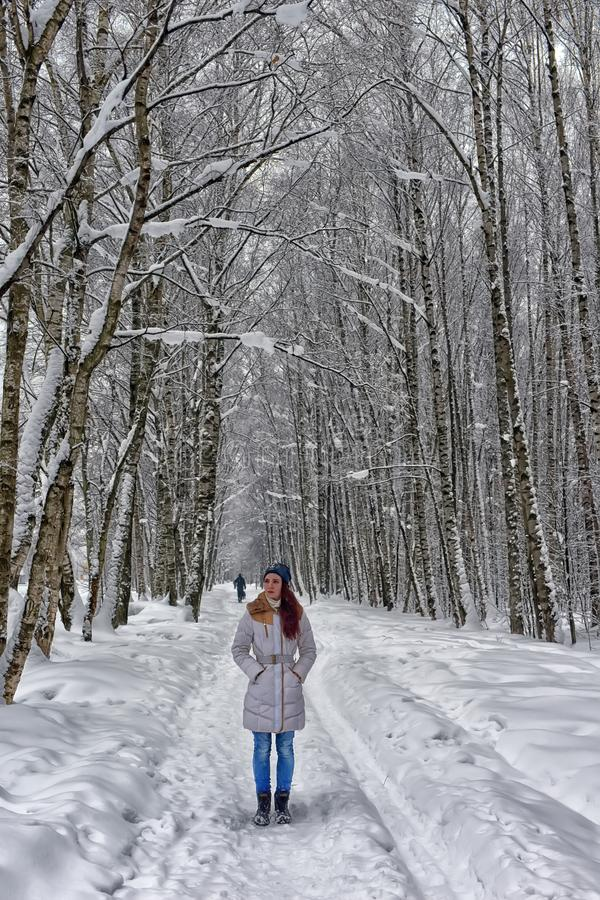 Girl on a forest road in winter stock images
