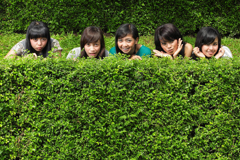 Download Girl Friends Group Hiding Behind The Tree Stock Image - Image: 17880769