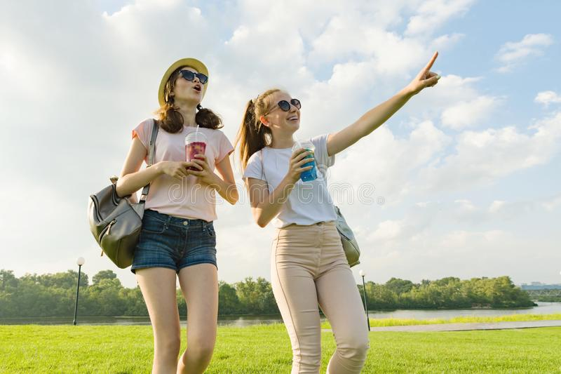 Girl friends are walking in the park in nature. Girls walk along the green lawn, talk, have fun. royalty free stock images