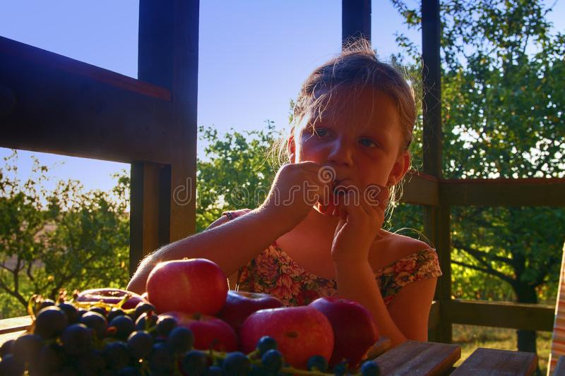 Girl with fruit in the garden. Beautiful little farmer girl holding and eating organic fruits, grapes, apples. The stock photography