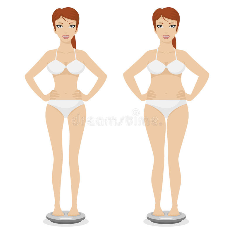 Download Girl full and thin stock vector. Illustration of figure - 35599532
