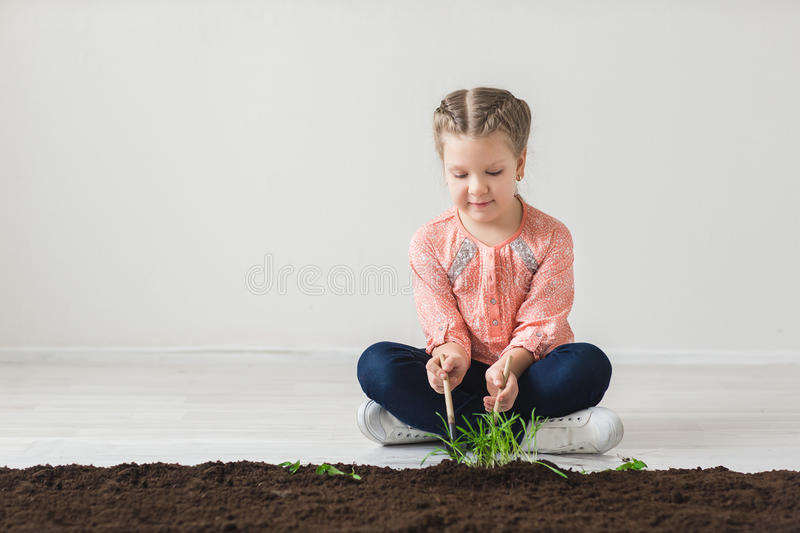 The girl fumbles with the land and plants a plant.  royalty free stock images